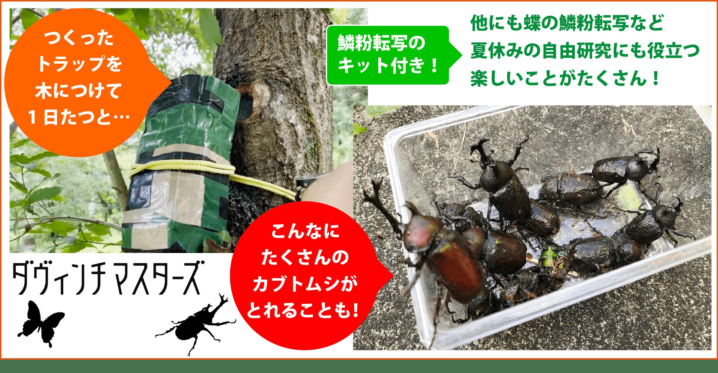 【定員間近】8/1開催!自由研究のまとめつき!昆虫博士になろう!オンラインプログラム